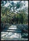 view Los Angeles -- Untitled Garden in Los Angeles, California digital asset: Los Angeles -- Untitled Garden in Los Angeles, California