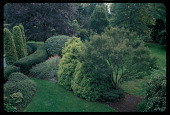 view Westport -- Hagel-Donnally Garden digital asset: Westport -- Hagel-Donnally Garden