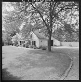 view Maida Babson Adams American garden collection digital asset: Brookfield -- Casal dos Gaiatos