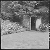 view Burpee Garden digital asset: Burpee Garden