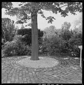view Darien -- Unidentified Garden in Darien, Connecticut digital asset: Darien -- Unidentified Garden in Darien, Connecticut