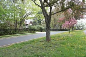 view Hartford -- Scarborough Farm digital asset: Hartford -- Scarborough Farm