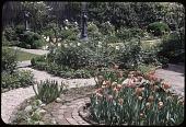 view Stroud Garden, Garden Images digital asset: Washington -- Stroud Garden