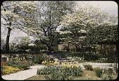 view Les Ormes, Garden Images digital asset: Washington -- Les Ormes