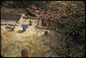 view Phillips Garden, Garden Images digital asset: Washington -- Phillips Garden