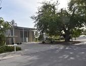 view Sarasota -- Umbrella House digital asset: Sarasota -- Umbrella House
