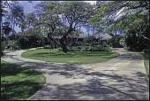 view Honolulu -- Pu'u Panini digital asset: Honolulu -- Pu'u Panini