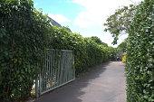 view Honolulu -- Butler Garden digital asset: Honolulu -- Butler Garden