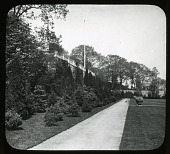 view Swiftmoor: Evergreen planting digital asset: Swiftmoor: Evergreen planting