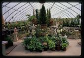 view New Bedford -- Haskell Garden digital asset: New Bedford -- Haskell Garden