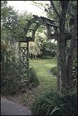 view Leland -- Joseph Thomas Mathis House Garden digital asset: Leland -- Joseph Thomas Mathis House Garden