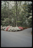 view Asheville -- W. K. Symmes Residence digital asset: Asheville -- W. K. Symmes Residence