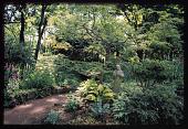 view Asheville -- Kenilworth Gardens digital asset: Asheville -- Kenilworth Gardens