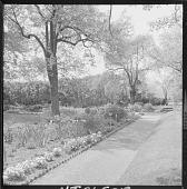 view New Vernon -- Kinney Garden (Lee's Hill Farm) digital asset: Harding -- Kinney Garden