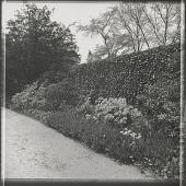 view Englewood -- Low Garden digital asset: Englewood -- Low Garden