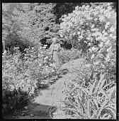 view Glen Ridge -- Westcott Garden digital asset: Montclair -- Westcott Garden