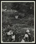view Staten Island (Dongan Hills) -- Smithfield/Kenneth D. Smith Gardens digital asset: Staten Island (Dongan Hills) -- Smithfield/Kenneth D. Smith Gardens