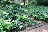view Chatham -- Bent-McDowell Garden digital asset: Chatham -- Bent-McDowell Garden