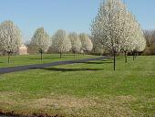 view Lambertville -- Hart-Vorhees Farmstead-Lipson Garden digital asset: Lambertville -- Hart-Vorhees Farmstead-Lipson Garden