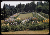 view New York -- Kenneth D. Smith Gardens digital asset: New York -- Kenneth D. Smith Gardens