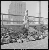 view New York -- Young Garden digital asset: New York -- Young Garden