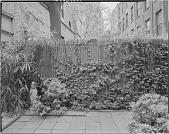 view New York -- Unidentified Garden in New York, New York, No. 5 digital asset: New York -- Unidentified Garden in New York, New York, No. 5