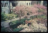view New York -- The Jones' Wood Garden digital asset: New York -- The Jones' Wood Garden