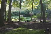 view Oyster Bay Cove -- Hilliard Garden digital asset: Oyster Bay Cove -- Hilliard Garden