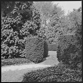 view Brookville -- Suarez Garden digital asset: Brookville -- Suarez Garden