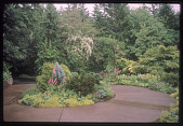 view Portland -- Old Germantown Gardens digital asset: Portland -- Old Germantown Gardens
