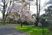 view Philadelphia -- Jenks Garden (Jenks-Carrie Garden) digital asset: Philadelphia -- Jenks Garden (Jenks-Carrie Garden)