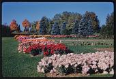 view Hershey -- Hershey Rose Garden digital asset: Hershey -- Hershey Rose Garden