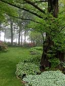 view Fairview -- The Frenzel Garden digital asset: Fairview -- The Frenzel Garden