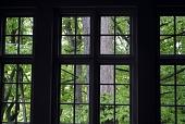 view Pittsburgh -- Cherrytree House digital asset: Pittsburgh -- Cherrytree House