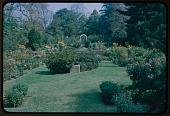 view Merion -- The Barnes Arboretum digital asset: Merion -- The Barnes Arboretum