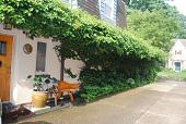 view Pittsburgh -- Speyer Garden, The digital asset: Pittsburgh -- Speyer Garden, The