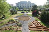 view Washington -- Victory Garden digital asset: Victory Garden 2001-ongoing
