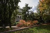 view Washington -- Hirshhorn Sculpture Garden digital asset: Hirshhorn Sculpture Garden 1972-ongoing