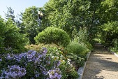 view Washington -- Pollinator Garden digital asset: Pollinator Garden 1994-ongoing