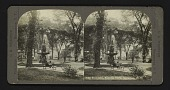 view Fountain, Fayette Park, Syracuse, N.Y. digital asset: Fountain, Fayette Park, Syracuse, N.Y.