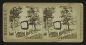 view U.S. National Cemetery, Arlington digital asset: [U.S. National Cemetery, Arlington]