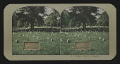 view Soldiers' Graves, Arlington digital asset: Soldiers' Graves, Arlington