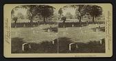 view Soldiers' Graves, Arlington, Va. digital asset: Soldiers' Graves, Arlington, Va.