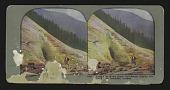 view At the Foot of the Great Illecillewaet Glacier, Glacier, British Columbia, Canada digital asset: At the Foot of the Great Illecillewaet Glacier, Glacier, British Columbia Canada