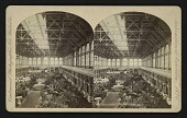 view Horti. Hall From West Gallery digital asset: Horti. Hall From West Gallery