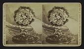 view [wreath] digital asset: [wreath]