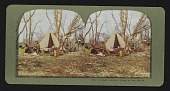 view A Duck Hunter's Camp on the Marsh digital asset: A Duck Hunter's Camp on the Marsh