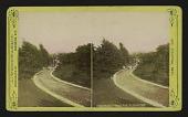 view Walk in Benton Park, St. Louis, Mo. digital asset: Walk in Benton Park, St. Louis, Mo.