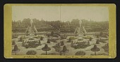 view Shaw's Garden, St. Louis, Mo. [Central View from Palm-House] digital asset: [Untitled]