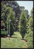 view Knoxville -- Craiglen digital asset: Knoxville -- Craiglen